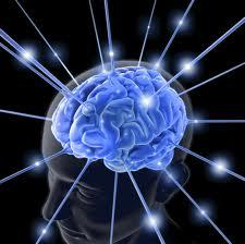brainhealth1