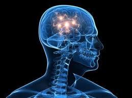 brainhealth11