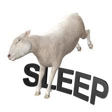 insomnia26
