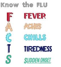 flu13