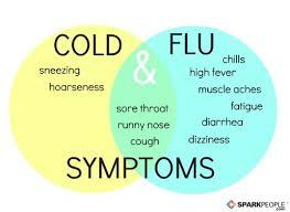 flu23