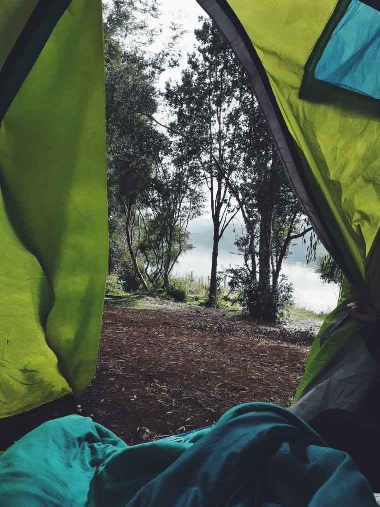 green tent near trees